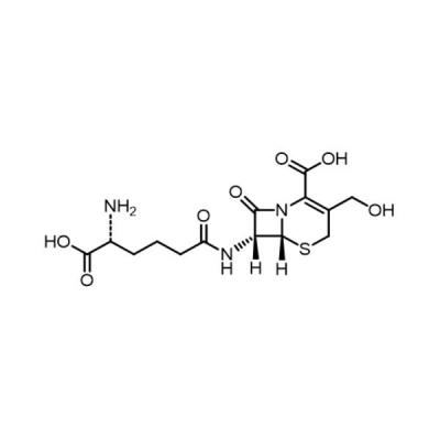 Deacetylation Cephalosporin C